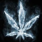 Comment arreter de fumer cannabis  C'est une question que l'on se pose…